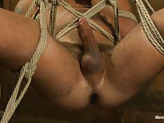 handjob, bdsm, hanging, tied up, anal insertion, gay, ropes, stick with dildo, men on edge, kink men, damian taylor, damian taylor, men on edge, kinky dollars