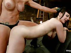 blonde, bdsm, strapon, lesbians, big tits, domination, brunette, gloves, from behind, anal insertion, ass slapping, mom, whipped ass, kink, felony, katharine cane, felony, katharine cane, whipped ass, kinky dollars