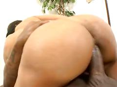 Dee rida gets her black ass drilled