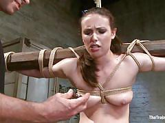 bdsm, vibrator, brunette, tied up, anal insertion, executor, mom, restraints, beam, the training of o, kink, casey calvert, casey calvert, the training of o, kinky dollars