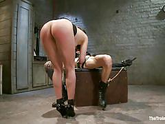 milf, handjob, bdsm, round ass, brunette, big dick, riding cock, cock sucking, anal plug, tied on table, the training of o, kink, owen gray, casey calvert, owen gray, casey calvert, the training of o, kinky dollars
