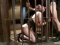 milf, bdsm, trampling, big cock, brunette, tied up, mouth fuck, pussy rubbing, ropes, clamps, bondage cage, the training of o, kink, owen gray, casey calvert, owen gray, casey calvert, the training of o, kinky dollars