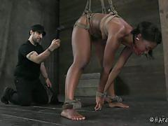 bdsm, tied, vibrator, executor, ball gag, black chick, hard tied, chanell heart