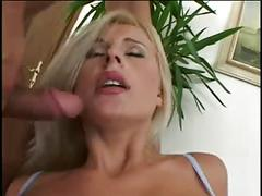 anal, blondes, cream pie, double penetration, threesomes