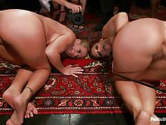 Hot asses milfs disgraced and fucked