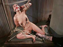small tits, milf, sadism, bondage, bdsm, vibrator, brunette, tied up, ropes, clamps, ball gag, sadistic rope, kink, juliette march