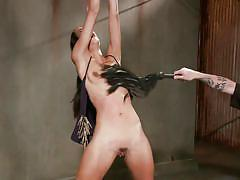 milf, whipping, slim, screaming, brunette, tied up, ropes, lash, executor, ball gag, rope in pussy, shaved vagina, sadistic rope, kink, lyla storm