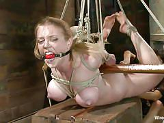 Tied blonde and her dildo filled pussy