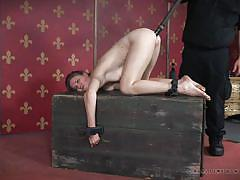 bdsm, anal gape, babe, anal dildo, brunette, device bondage, real time bondage, ashley lane
