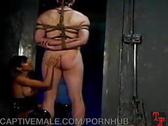 bondage, dominatrix, domination, bdsm, bound, tied, mistress, torment, sadism, masochism