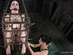 milf, pain, bdsm, torture, brunette, mouth gagged, bondage cage, sharp stick, infernal restraints, dixon mason