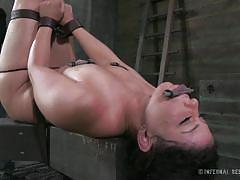 milf, bondage, bdsm, torture, dungeon, tied up, black hair, mouth gag, stick with dildo, restraints, infernal restraints, mia gold