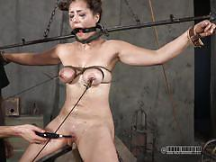 milf, pain, bdsm, mistress, rope, brunette, tit torture, tied up, clamps, shibari, restraints, caged, real time bondage, sister dee