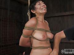 milf, pain, mistress, lesbian domination, whipped, screaming, brunette, tied up, bastonnade, shibari, real time bondage, nyssa nevers