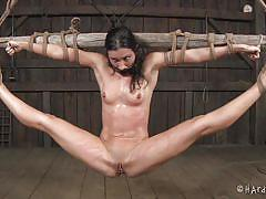 milf, pain, bdsm, torture, hanging, vibrator, brunette, dungeon, tied up, ropes, clamps, mouth gagged, shibari, hard tied, wenona