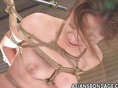 Japanese babe bond and dildoed