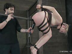 milf, blonde, bondage, bdsm, torture, hanging, round ass, bound, tied up, leather belts, stick with dildo, infernal restraints, tracy sweet