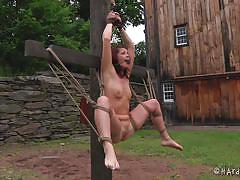 milf, bdsm, torture, outdoor, tied up, brown hair, ropes, mouth gagged, stick with dildo, hard tied, cici rhodes