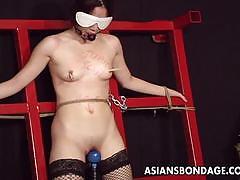 bdsm, bondage, stockings, japanese, japan, whip, small boobs