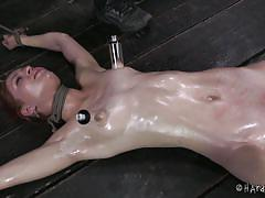 milf, bdsm, stockings, oiled, vibrator, brunette, tit torture, ropes, executor, suckers, hard tied, calico lane