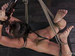 milf, blonde, bdsm, tied up, sex toys, ropes, clamps, executor, ball gag, hard tied, lea lexus