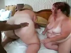 2 white ssbbws fucking