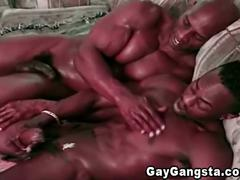 Cock sucking black gay studs