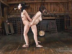 Double ended dildo for two sex slaves