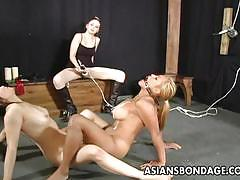 Smutty bdsm for these asian and blonde slaves