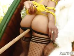 Fishnet brunette alexandra gets her ass fucked