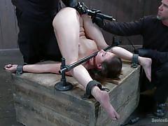 bondage, babe, torture, hot ass, pussy fingering, executors, black gloves, device bondage, kink, casey calvert, orlando