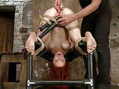 milf, bdsm, redhead, vibrator, fingering, tied up, anal insertion, upside down, restraints, hogtied, kink, penny pax