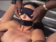anal, bdsm, tits
