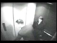 Security cam - blow job in an elevator