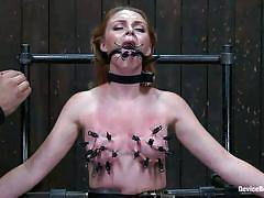 milf, bondage, redhead, whipping, domination, tit torture, metal clamps, device bondage, kink, marie mccray, orlando