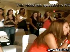Dancing bear (34)