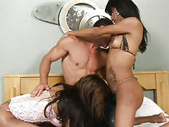 Hunk gets double shemale blowjob