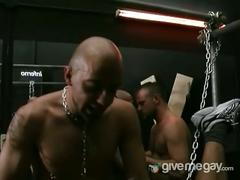 Leather gay hunks lovs hardcore gay orgy sex.