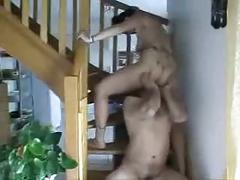 Lechage de chatte dans l escalier