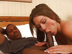 Pregnant white babe sucks black cock