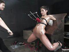 small tits, milf, bdsm, whipping, oiled, vibrator, brunette, moaning, tied up, bondage device, vault, restraints, device bondage, kink, jade indica