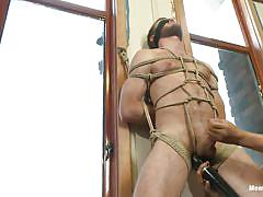 Gay tied and pleased by executors