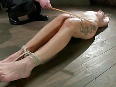 bdsm, spanking, babe, tied, screaming, on floor, hot wax, sadistic rope, kink, andre shakti