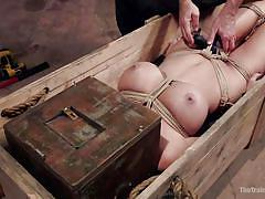 Busty bitch gets boxed in