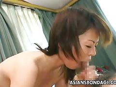 Shy looking cock sucking japanese