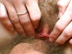 Russian hairy