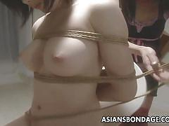 Asian slut is tied up