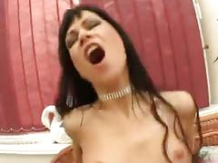anal, babes, gangbang, pornstars, cumshots