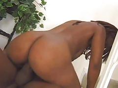 Black cunt drilled by a thick cock