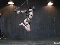 bdsm, whipped, tit torture, hanged, brunette babe, executor, in chains, mouth gagged, device bondage, kink, lyla storm